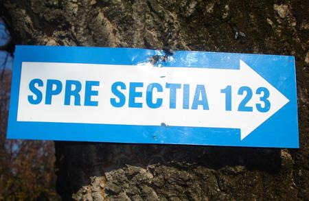 sectia