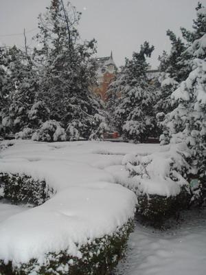 iarna14