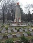 cimitir7