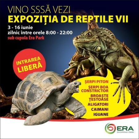 oradea-3iunie2015